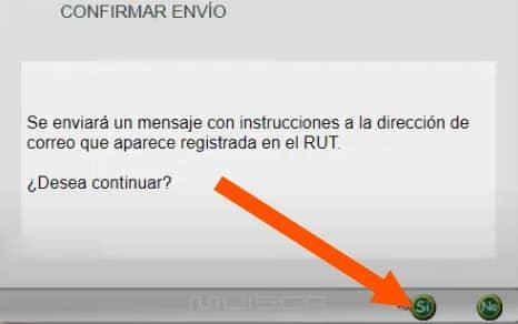 confirmar envío password rut